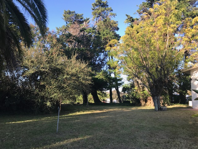 immo-globus-uruguay-Ort-casa-luisas-haus-jardin-id1806-640x480-001