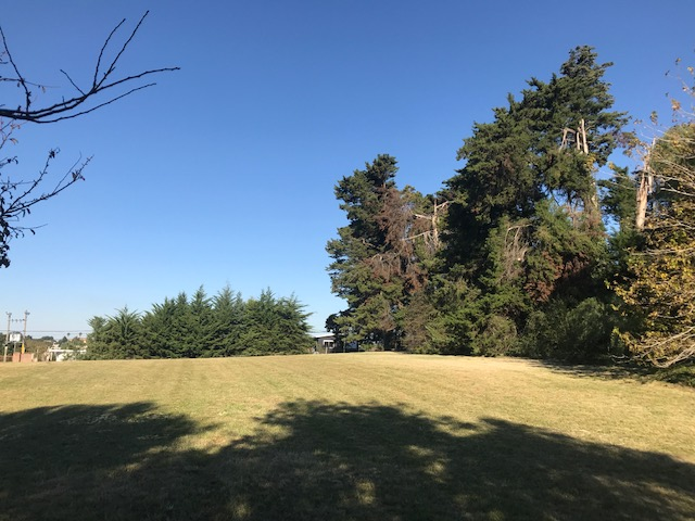 immo-globus-uruguay-Ort-casa-luisas-haus-jardin-id1806-640x480-002