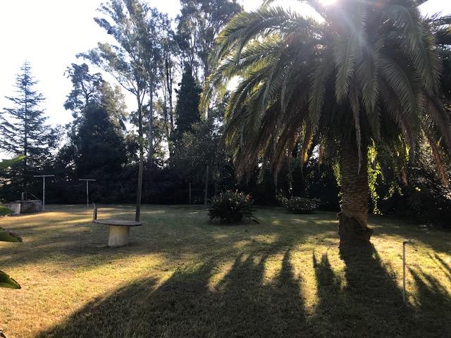 immo-globus-uruguay-Ort-casa-luisas-haus-jardin-id1806-640x480-004